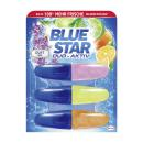Blue Star WC-Stein Duo Aktiv 3x50ml