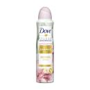 Dove Deospray Limited Edition Winter Care